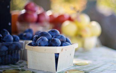 Jak wychować smakosza – wywiad z Zuzanną Antecką