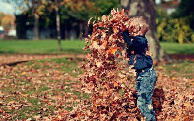 Znaczenie zabawy w życiu dziecka – wywiad z Agnieszką Plachą, Pani Kredką